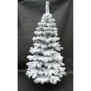 Hustý stromeček na Vánoce zasněžená jedle
